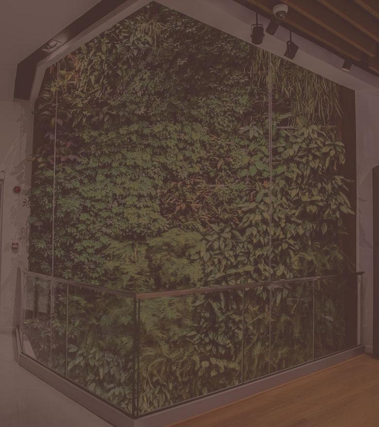 Différents supports d'un mur végétalisé / jardin vertical