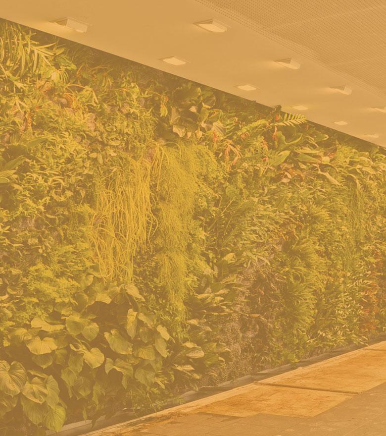 Tutoriel pour créer soi-même son mur végétal