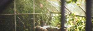 serre-jardin